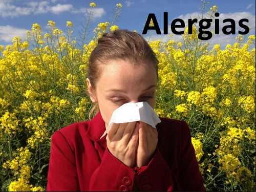 Alergias Online